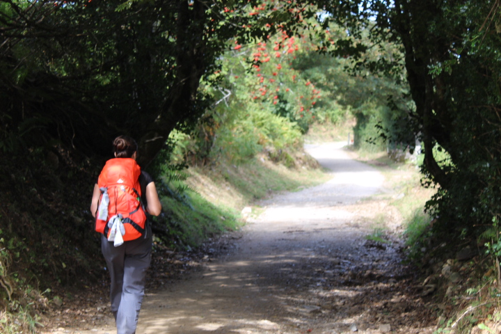 CAMINO 2019: The main start points where Sarria, Saint-Jean-Pied-de-Port, Oporto…