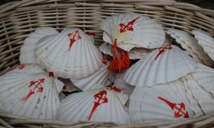 The shell: the emblem of the pilgrimage to Santiago