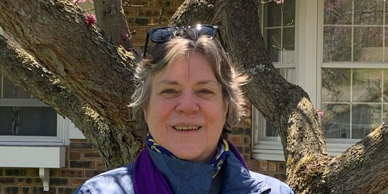 Reflections on the Camino from the lockdown: Anne Born