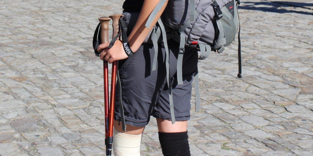 Walking stick or hiking poles?