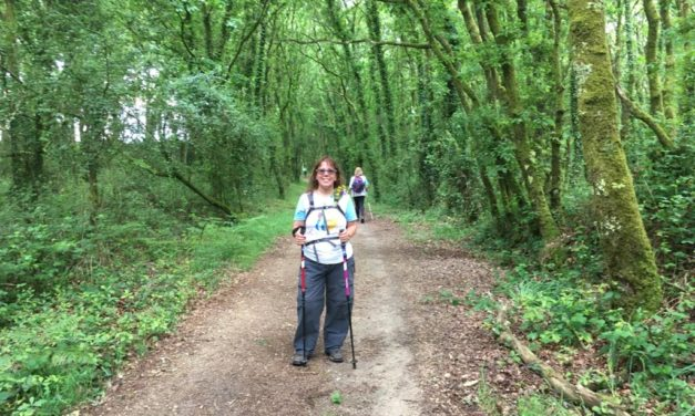 Holy Year 2021: Rosana Montano. President of the Association of Friends of the Camino de Santiago in Argentina