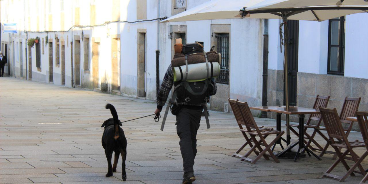 Milagroso Camino: Casi 600 peregrinos cogieron la Compostela en noviembre y la mayoría extranjeros!