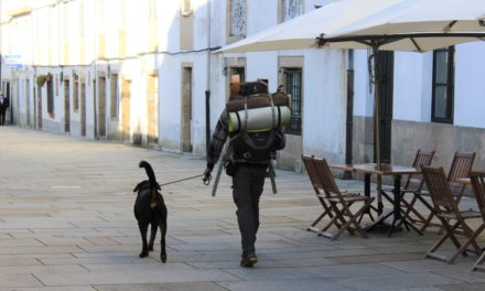 A miraculous Way: Almost 600 pilgrims took the Compostela in November and mostly foreigners!