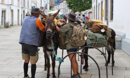La semana del Apóstol la ciudad de Santiago se llena de peregrinos! Todo tipo de peregrinos!